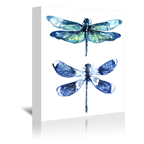 Dragonfly Wings by Sam Nagel Wrapped Canvas