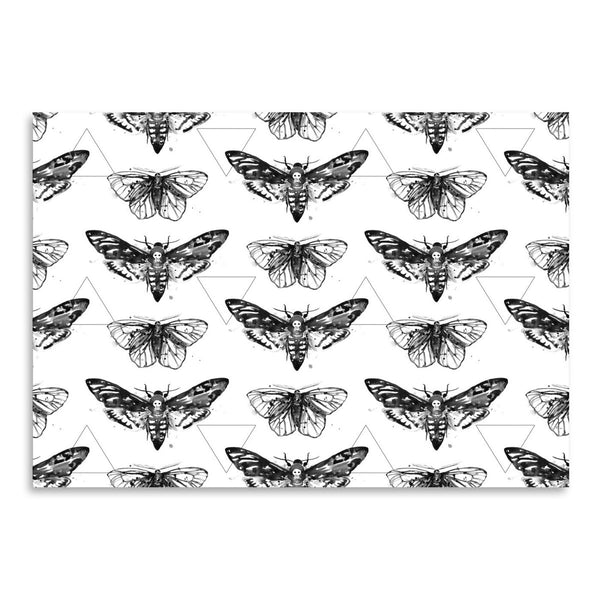 Geometric Moths by Sam Nagel Art Print