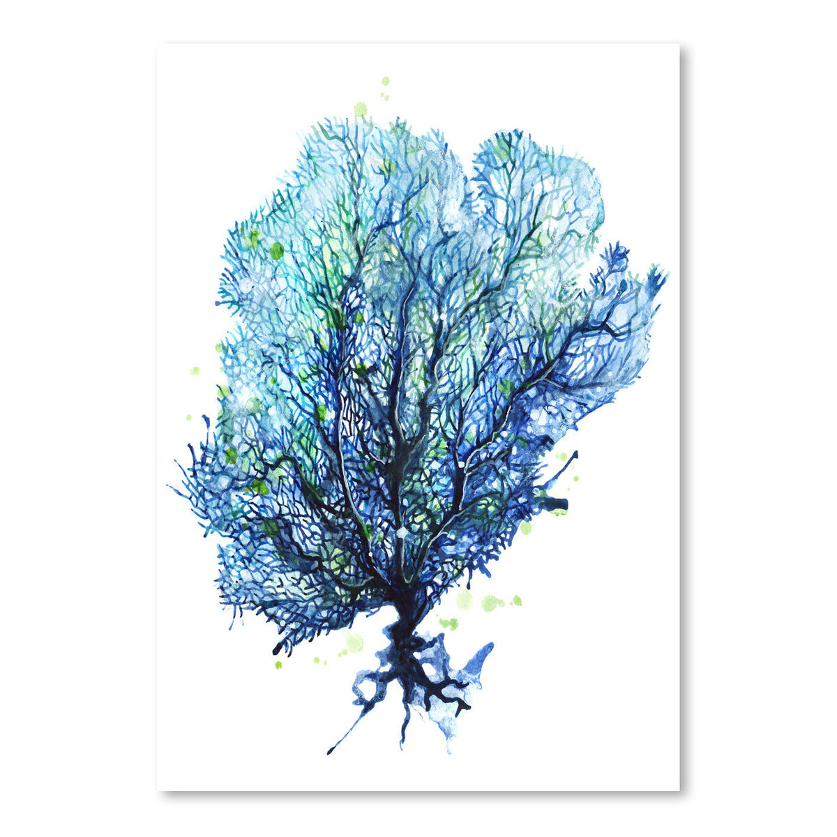 Sea Fan Aqua by Sam Nagel Art Print - Art Print - Americanflat