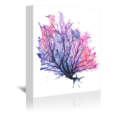 Sea Fan Purple by Sam Nagel Wrapped Canvas - Wrapped Canvas - Americanflat