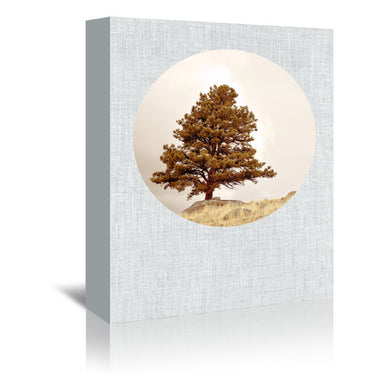 Hillside Morning by Annie Bailey Wrapped Canvas - Wrapped Canvas - Americanflat