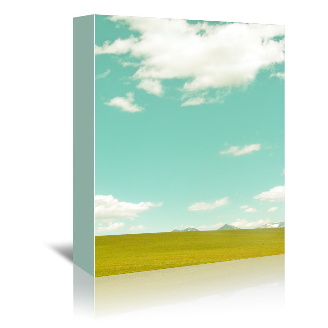 Spring Meadow by Annie Bailey Wrapped Canvas - Wrapped Canvas - Americanflat