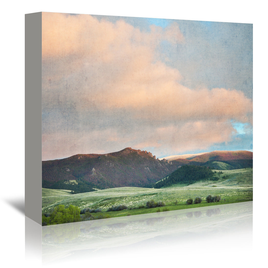 Springtime Skies by Annie Bailey Wrapped Canvas - Wrapped Canvas - Americanflat