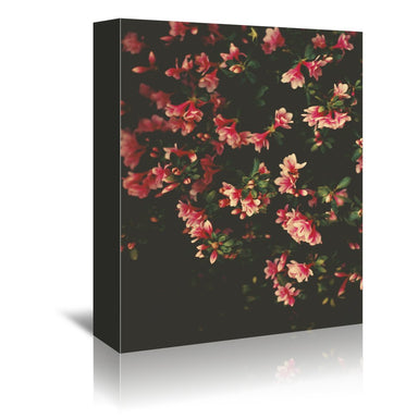 Azalea by Ingrid Beddoes Wrapped Canvas - Wrapped Canvas - Americanflat