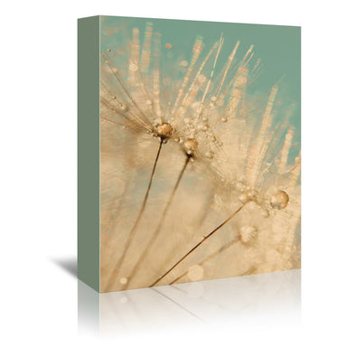Dandelion Gold Mint Gold by Ingrid Beddoes Wrapped Canvas - Wrapped Canvas - Americanflat
