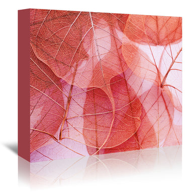 Delicate In Pink by Ingrid Beddoes Wrapped Canvas - Wrapped Canvas - Americanflat
