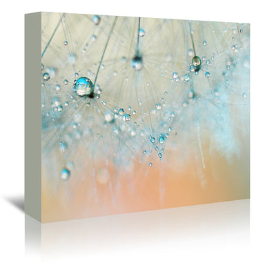Droplets Of Aqua by Ingrid Beddoes Wrapped Canvas - Wrapped Canvas - Americanflat