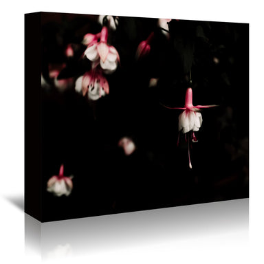 Fuchsia by Ingrid Beddoes Wrapped Canvas - Wrapped Canvas - Americanflat