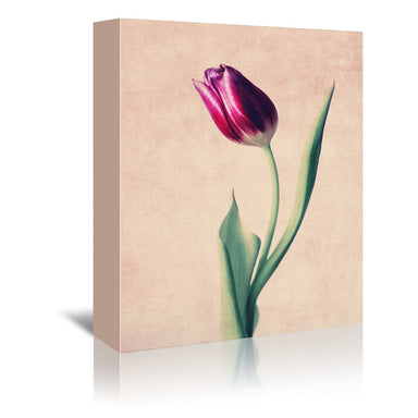 Grace by Ingrid Beddoes Wrapped Canvas - Wrapped Canvas - Americanflat