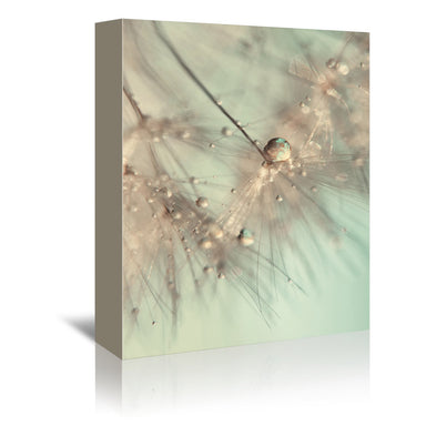 Morning Sparkle by Ingrid Beddoes Wrapped Canvas - Wrapped Canvas - Americanflat