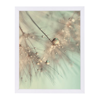 Morning Sparkle by Ingrid Beddoes Framed Print - Americanflat