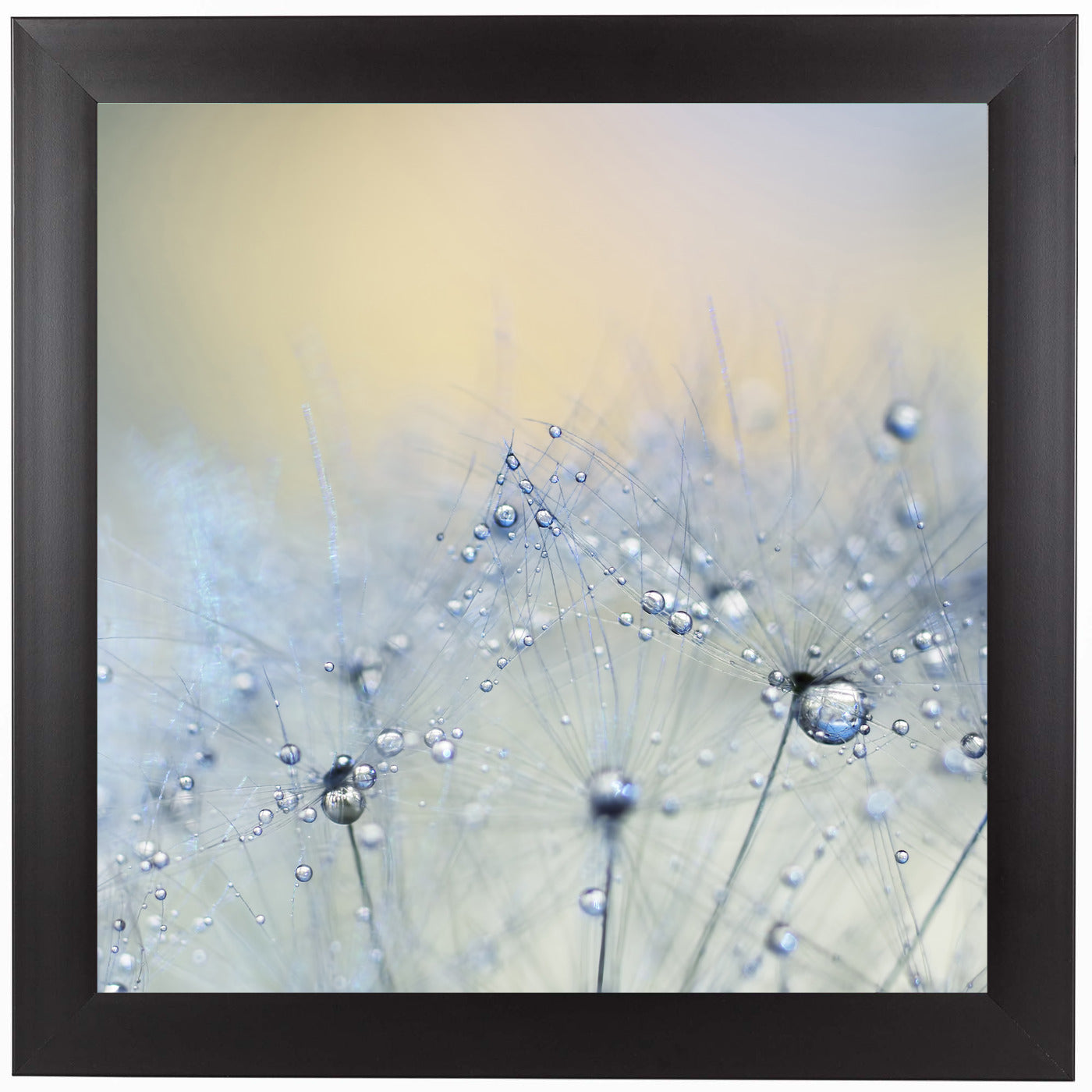 Ice Blue Copy by Ingrid Beddoes Framed Print - Wall Art - Americanflat