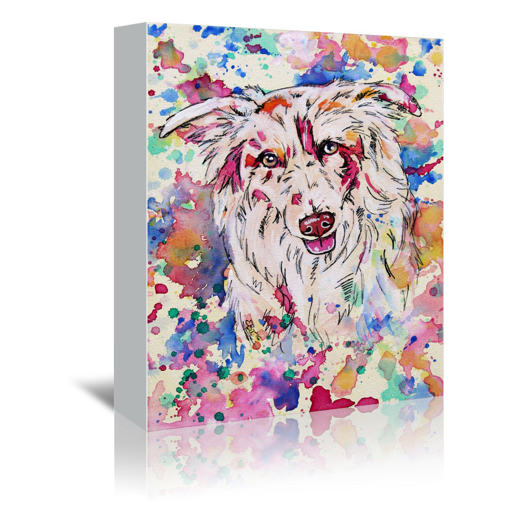 Red Merle Collie Portrait by Eve Izzett Wrapped Canvas - Wrapped Canvas - Americanflat