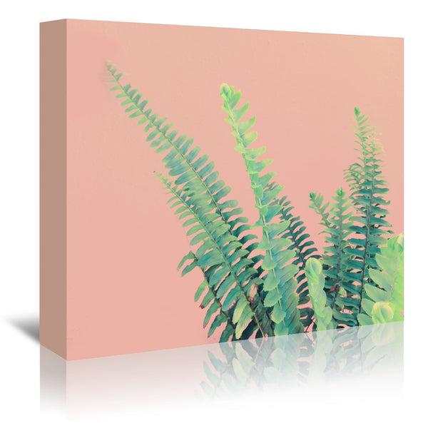 Ferns On Pink by Emanuela Carratoni Wrapped Canvas