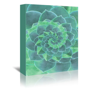 Geometric Succulent by Emanuela Carratoni Wrapped Canvas
