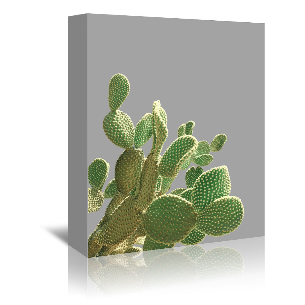 Minimal Cactus by Emanuela Carratoni Wrapped Canvas - Wrapped Canvas - Americanflat