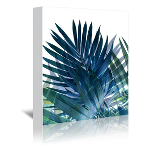 Palms Leaves by Emanuela Carratoni Wrapped Canvas