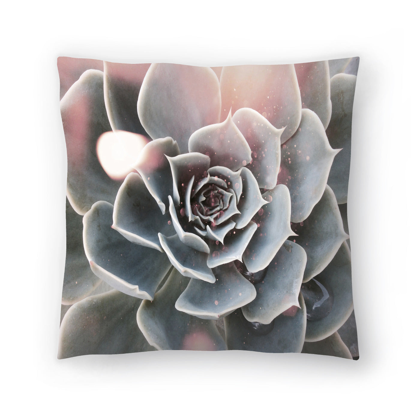 Shiny Succulent by Emanuela Carratoni Decorative Pillow - Decorative Pillow - Americanflat