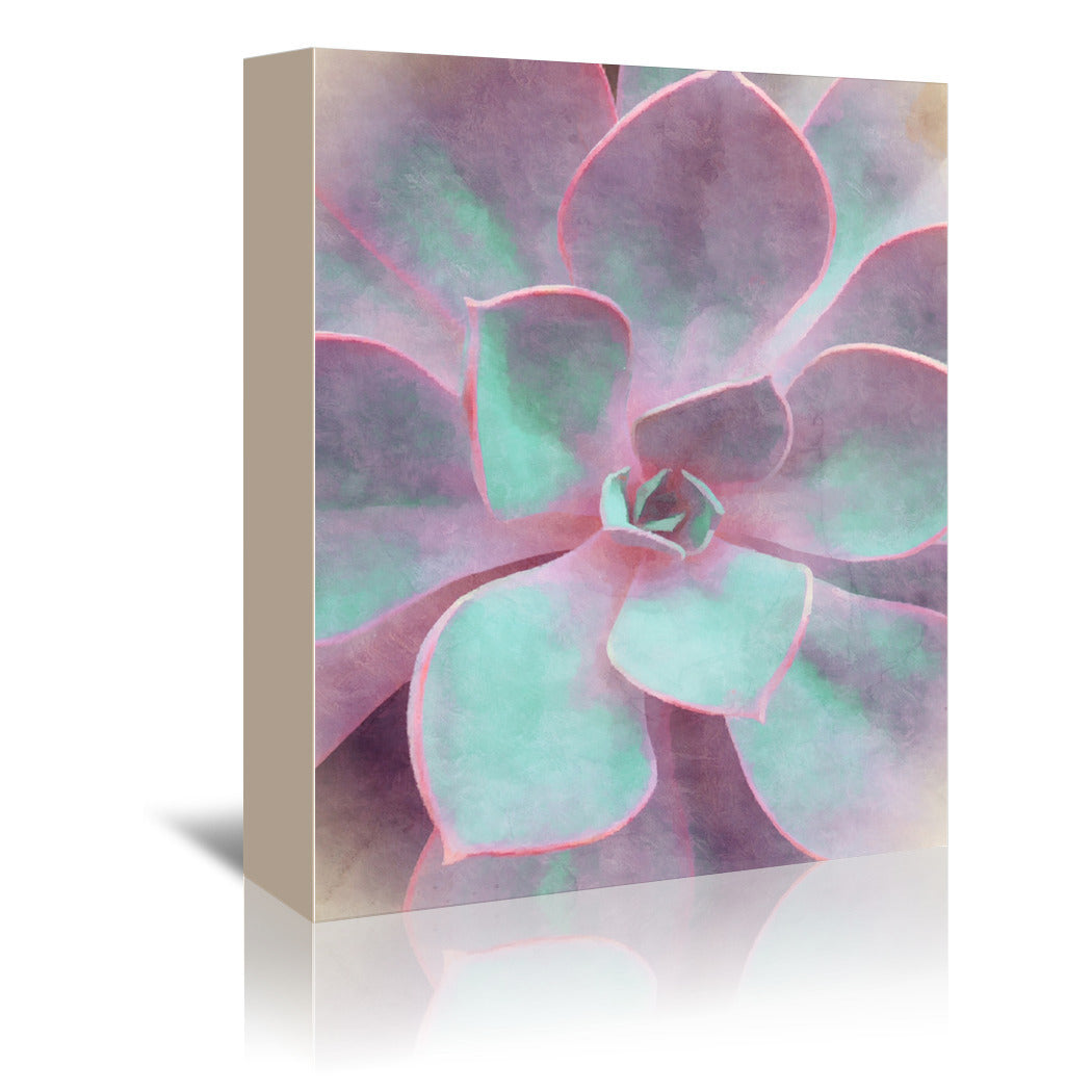Sweet Succulent by Emanuela Carratoni Wrapped Canvas - Wrapped Canvas - Americanflat