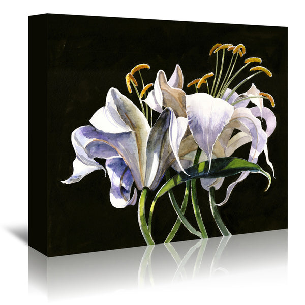 Classical Lilies by Anne Farrall Doyle Wrapped Canvas