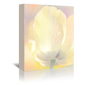 Tulip Dream by Mirja Paljakka Wrapped Canvas