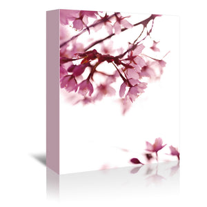 Pink Blossoms In Wind by Mirja Paljakka Wrapped Canvas