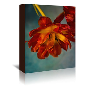 Fiery Tulips by Mirja Paljakka Wrapped Canvas