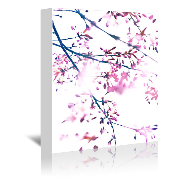Cherry Blossom 7 by Mirja Paljakka Wrapped Canvas