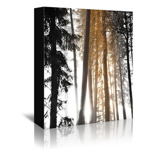 Tree Trunks Autumn Vertical by Mirja Paljakka Wrapped Canvas