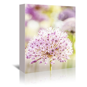 Spring Floral by Mirja Paljakka Wrapped Canvas
