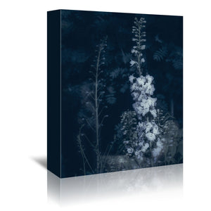 Cyanotype flowers by Mirja Paljakka Wrapped Canvas