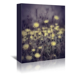 Yellow floral meadow Mood by Mirja Paljakka Wrapped Canvas