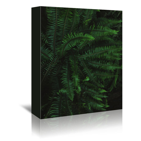 Fern Life by Leah Flores Wrapped Canvas