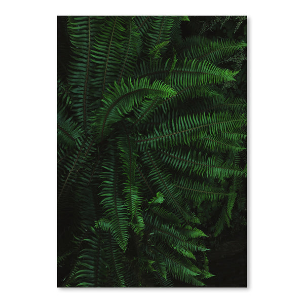 Fern Life by Leah Flores Art Print