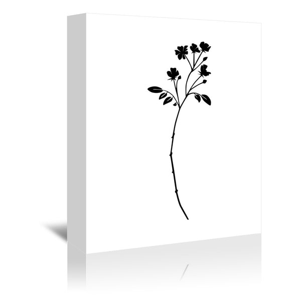 Botanic by Explicit Design Wrapped Canvas