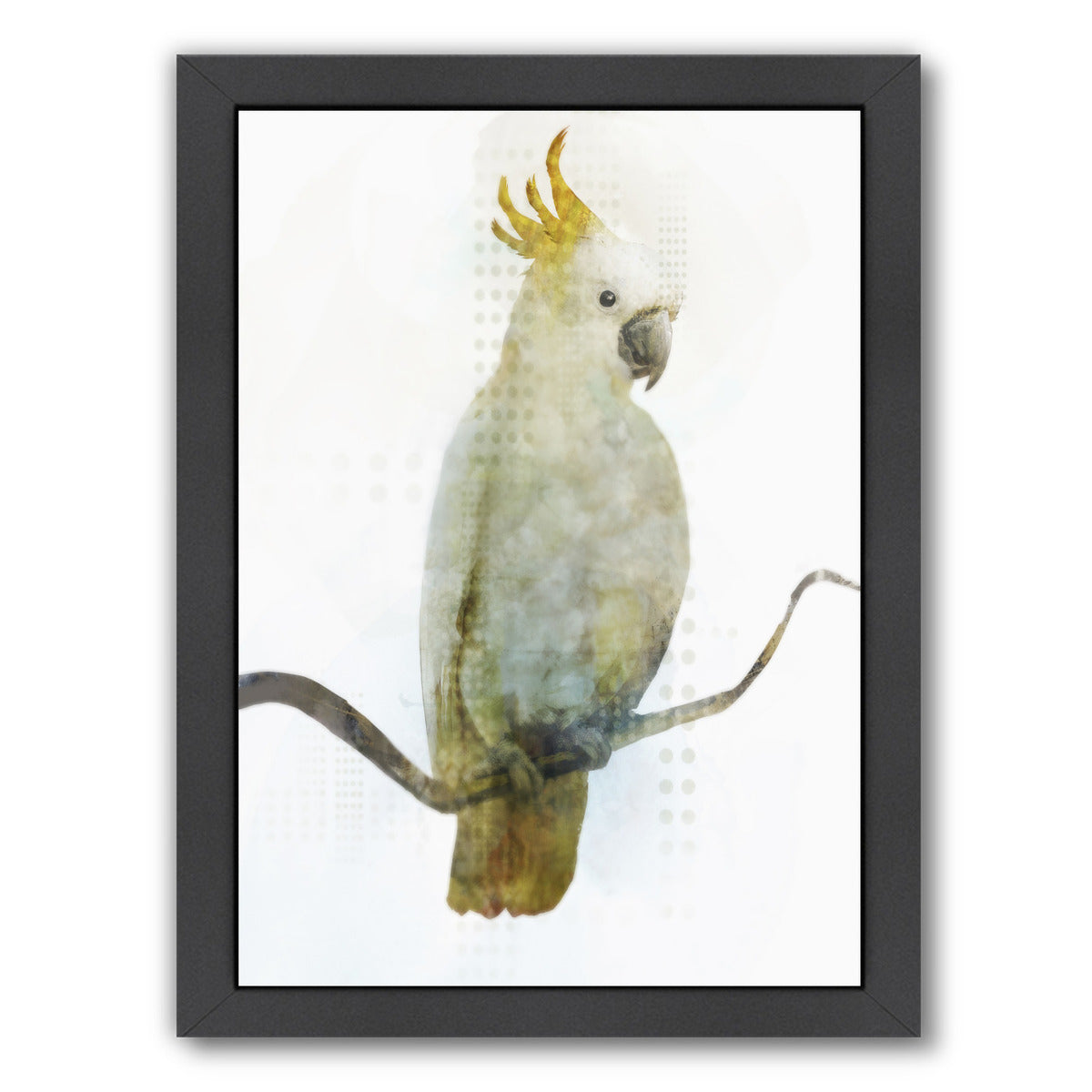 Cockatoo by PI Creative Art Framed Print - Americanflat