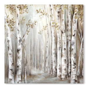 Sunset Birch Forest Iii by PI Creative Art  Print