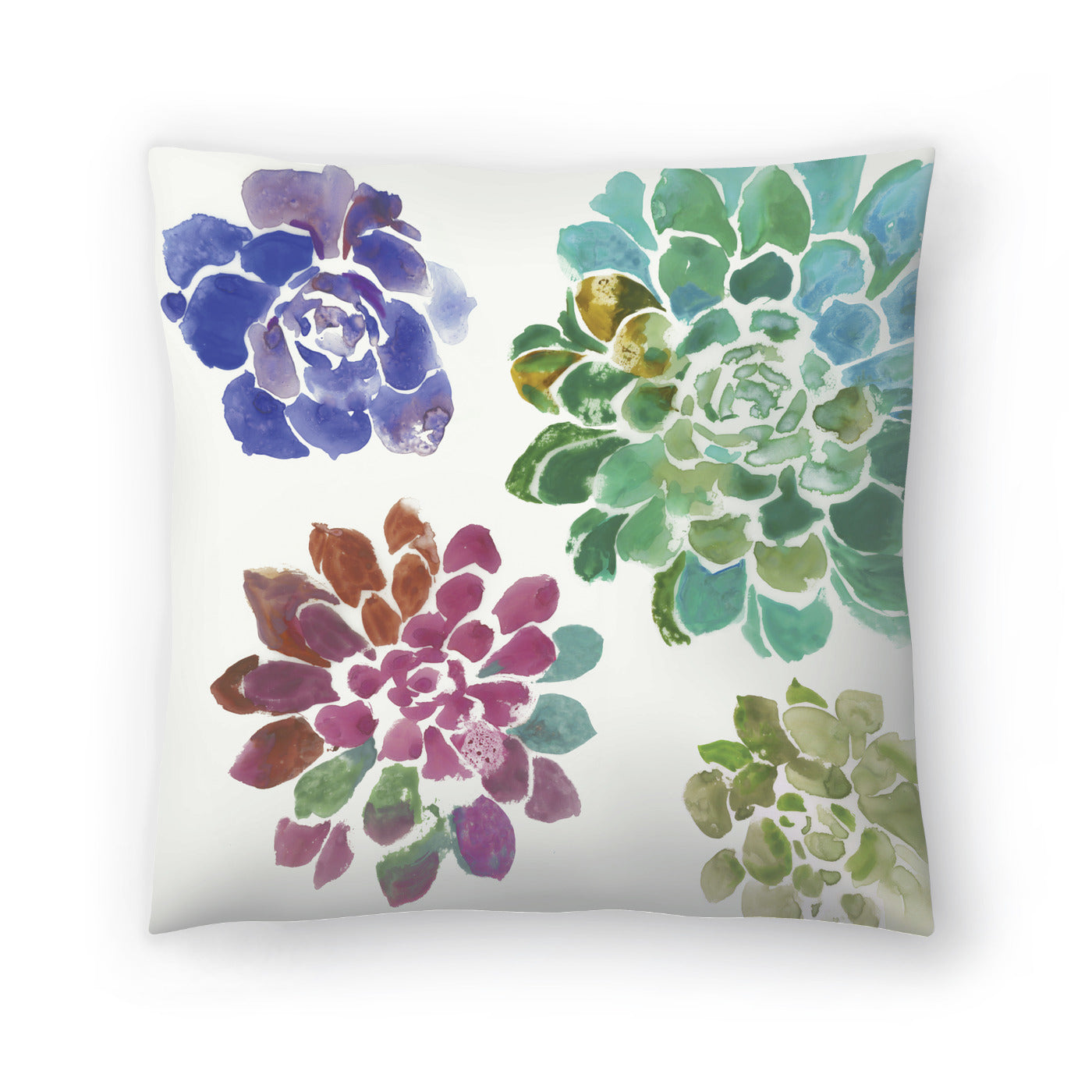 Water Succulents Ii by PI Creative Art Decorative Pillow - Decorative Pillow - Americanflat