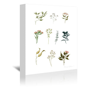 Delicate Botanical Pieces by Shealeen Louise Wrapped Canvas