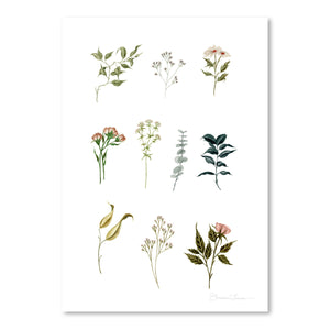 Delicate Botanical Pieces by Shealeen Louise Art Print