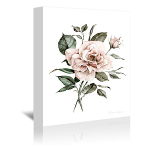 Faded Pink Rose by Shealeen Louise Wrapped Canvas