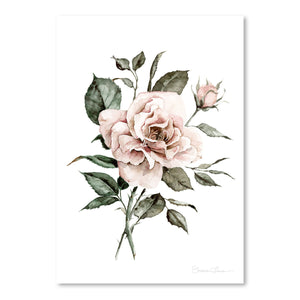 Faded Pink Rose by Shealeen Louise Art Print