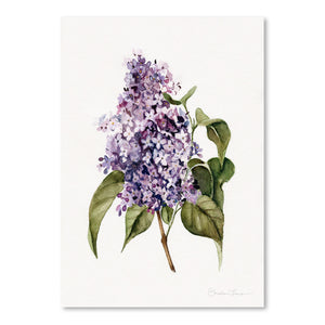 Lilac Branch by Shealeen Louise Art Print