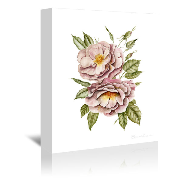 Matangi Roses by Shealeen Louise Wrapped Canvas