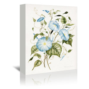 Morning Glories by Shealeen Louise Wrapped Canvas
