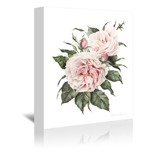 Pink Garden Roses by Shealeen Louise Wrapped Canvas