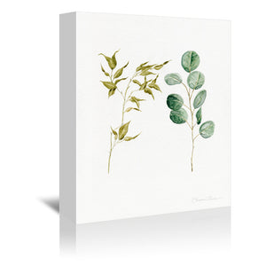 Two Eucalyptus Pieces by Shealeen Louise Wrapped Canvas