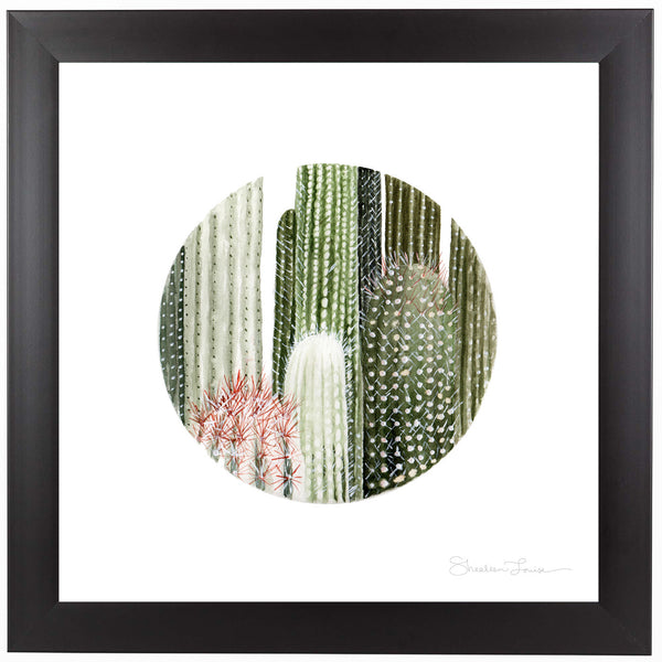 Circular Cacti by Shealeen Louise Framed Print