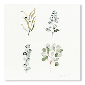 Eucalyptus Pieces by Shealeen Louise Art Print