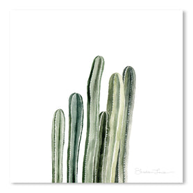 Tall Cacti by Shealeen Louise Art Print